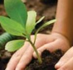 La première initiative de compensation carbone en Sardaigne !